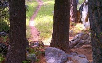 Jug Mountain Ranch Mountain Biking Trails