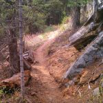Jug Mountain Trails
