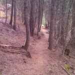 Jug Mountain Harpers Hollow