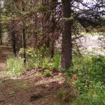 Upper Jug Reservoir Trail