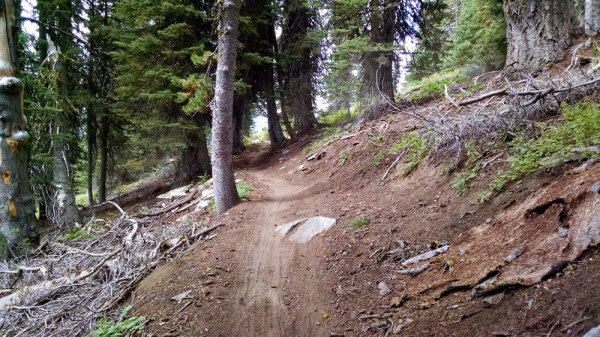 Brundage Mountain Bike Trails