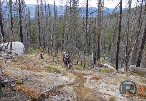 Dirt Biking Wangdoodle Trail